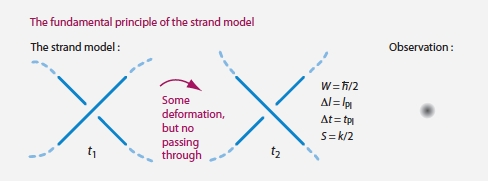 The fundamental principle of the strand model.